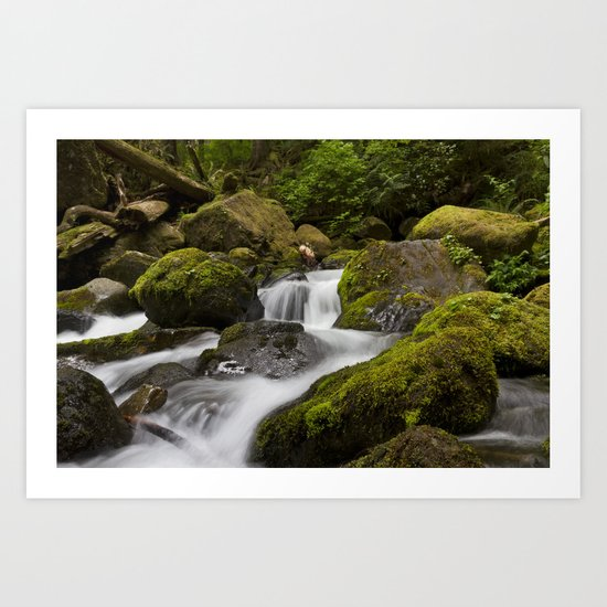 Water over moss Art Print