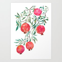 red pomegranate watercolor Art Print