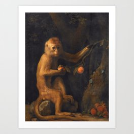 George Stubbs - A Monkey Art Print
