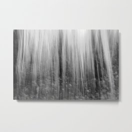 Ghostly forest, black and white Metal Print