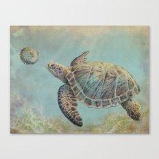 A Curious Friend (sea turtle variation) Canvas Print
