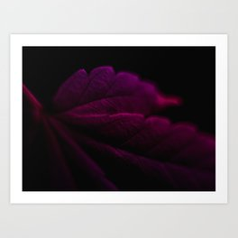 Purple Haze Leaf Art Print