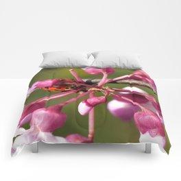 Flowering Redbud with Ladybug Comforters