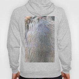 Rabbit Fur Hoody