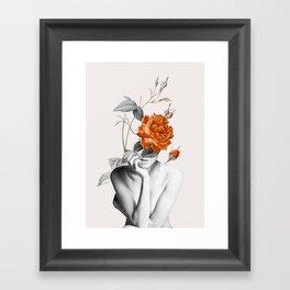 Rose 3 Framed Art Print