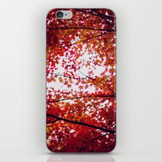 up in the trees you'll find peace iPhone & iPod Skin