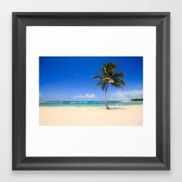 A Typical Beach Palm_2 Framed Art Print