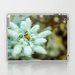 The Heart of Pirin - Leontopodium alpinum Laptop & iPad Skin
