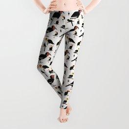 Hornbills  Leggings