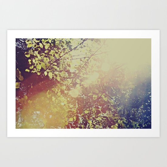 Afternoon Leaves Art Print