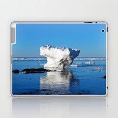 Iceberg in the Shallows Laptop & iPad Skin