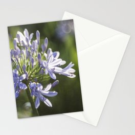 African Lily Bokeh Delight Stationery Cards