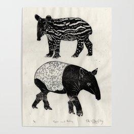 Malayan Tapir & Baby Poster