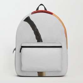 and now Backpack