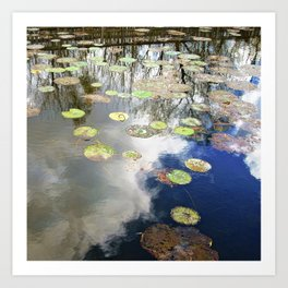 Autumn Lotus Pond Reflections Art Print