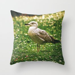 Side portrait of a seagull on the field Throw Pillow