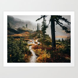 Pacific Northwest Forest Trail Art Print