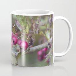 Sugar Coffee Mug