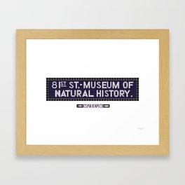 81st Street, Museum of Natural History Framed Art Print
