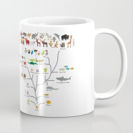 Evolution scale from unicellular organism to mammals. Evolution in biology, scheme evolution Coffee Mug