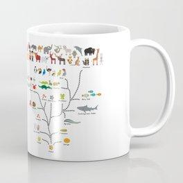 Evolution scale from unicellular organism to mammals. Evolution in biology, scheme evolution Coffee Mug