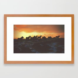 Golden Red Horses Framed Art Print