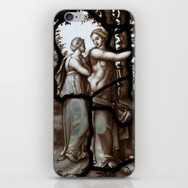 Stained glass château de chantilly iPhone Skin