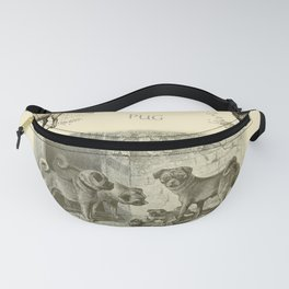 PUG DOGS Illustration Fanny Pack