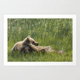 Drifting Off - Bear Cubs, No. 7 Art Print