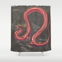 muscle Shower Curtains featuring Asian Lung Muscle Anatomy by Rushelle Kucala Art