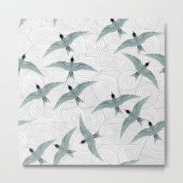 Arctic Terns Metal Print