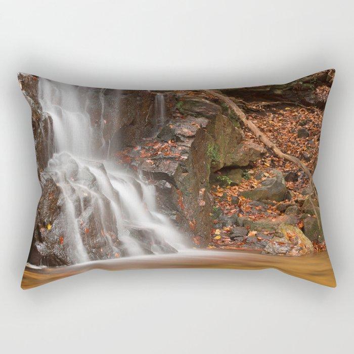 Avalon Hook Falls Rectangular Pillow