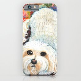 Maltese by Robynne iPhone Case