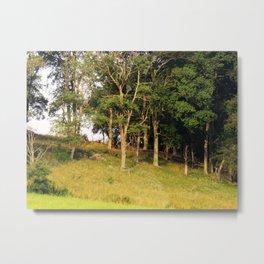 Hillside at Sunset Metal Print