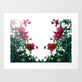 Tennessee Flowers  Art Print