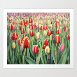 An oil painting on canvas of a spring seasonal theme. Colorful red, pink and yellow blooming tulips on display in Keukenhof Gardens, Netherlands. Art Print