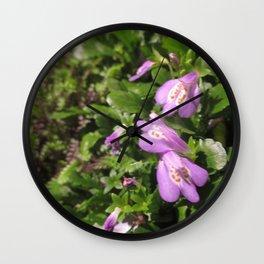 Purple Mazus Reptans - aka Creeping Mazus Wall Clock