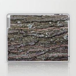 Tree Bark I Laptop & iPad Skin