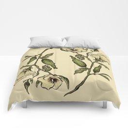 Botanical Okra Comforters