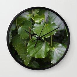 Kawakawa Wall Clock