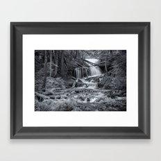 Big Springs (Black and White) Framed Art Print