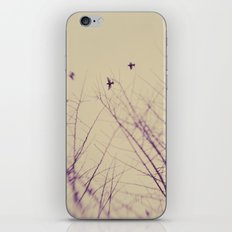 The Purity Of Spring iPhone & iPod Skin