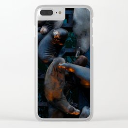 Santa Cruz Sea Lions Clear iPhone Case