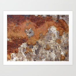Corroded Driftwood Art Print