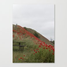 Hills of Poppies Canvas Print