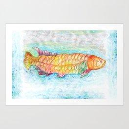 Peixe colorido (Colorful fish) Art Print