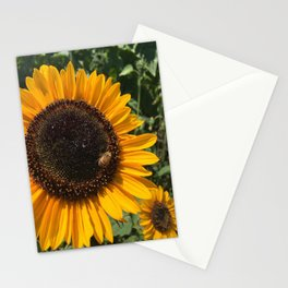 Sunflower and Honeybee Stationery Cards