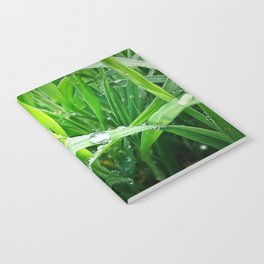 green grass Notebook