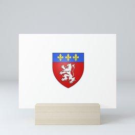 flag of Lyon Mini Art Print