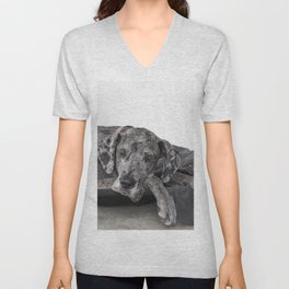 Great Dane waiting Unisex V-Neck
